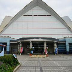 가고시마 수족관 여행 사진