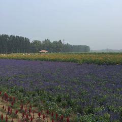 Liangshanzhai User Photo