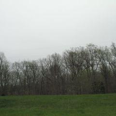 Evangeline State Park用戶圖片