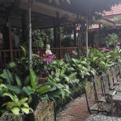 Ruen Thai Restaurant User Photo