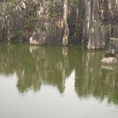 月湖用戶圖片