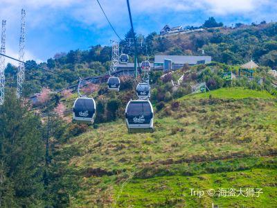 羅托魯瓦Skyline天空纜車