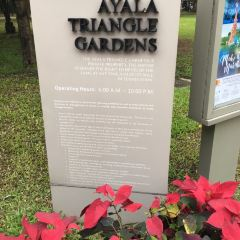 Ayala Triangle Gardens User Photo