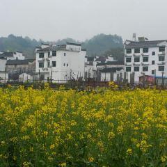 Wuyuan Scenic Area User Photo