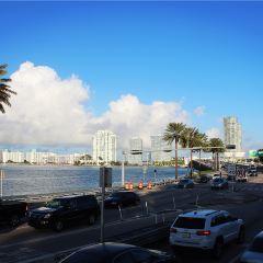 Big Bus Miami User Photo