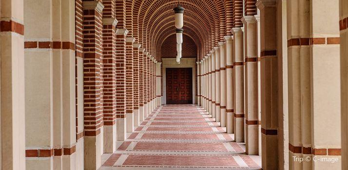 Rice University2