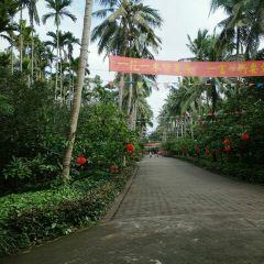 Xinglong Tropical Botanical Garden User Photo