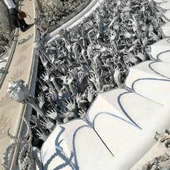 Wat Phrathat Doi Tong User Photo