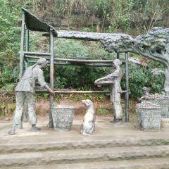 Zhouzi Ancient Town User Photo