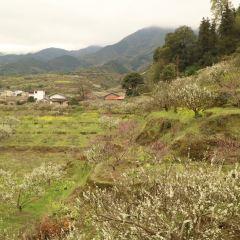 Jiufeng Town User Photo