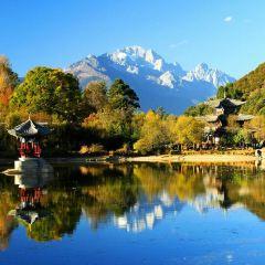 寧夏九龍灣風景區用戶圖片