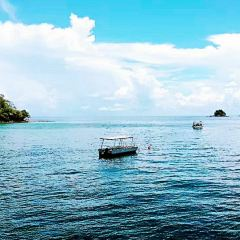芭雅島用戶圖片
