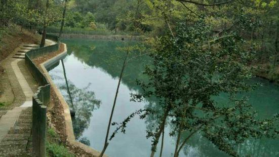 黃大仙赤松園