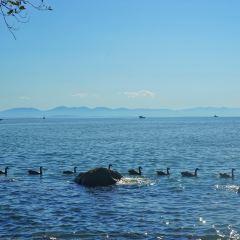 Kitsilano Beach User Photo