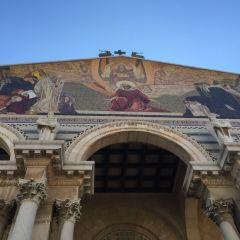 Garden of Gethsemane User Photo