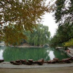 赤峰植物園用戶圖片