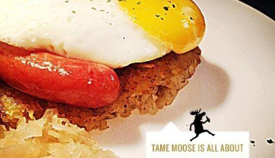 Tame Moose
