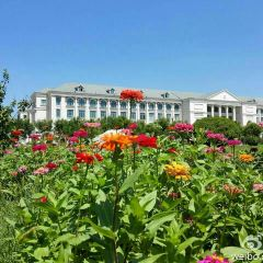 Shangqiushifan College User Photo