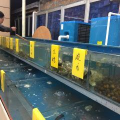 藍貝殼海鮮排檔用戶圖片