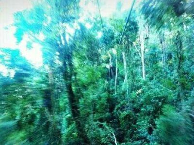 Skyline Eco-Adventures Kaanapali