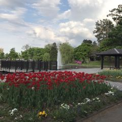 Tokiwa Park User Photo