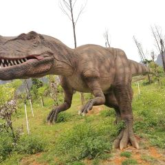 Long Gu Wan Dinosaur Park User Photo