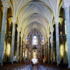 Basilique Notre-Dame de Nice User Photo
