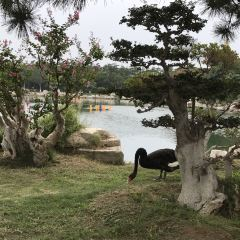 삼선산 풍경명승구 여행 사진