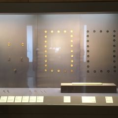 Suzhou Coins Museum User Photo