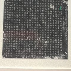 National Museum of Chinese Writing User Photo