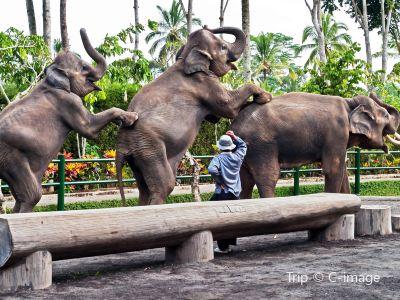 발리동물원
