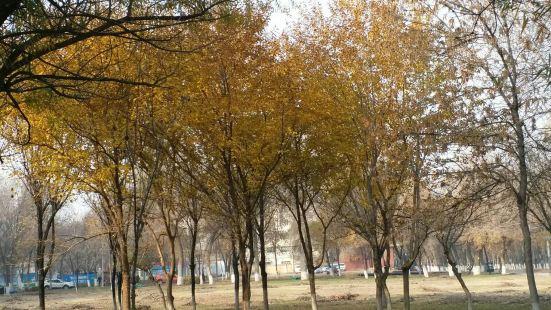 伊寧城市海景公園