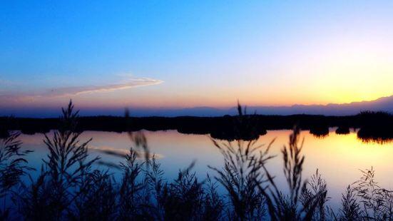 星海湖景區