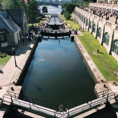 麗都運河用戶圖片
