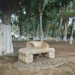 Guihu Park User Photo