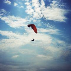 滑翔翼飛行場用戶圖片