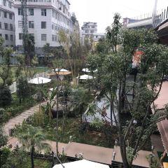 Wei Lu Zhu Jiu User Photo