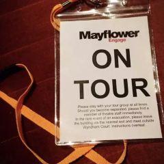 Mayflower Beach用戶圖片