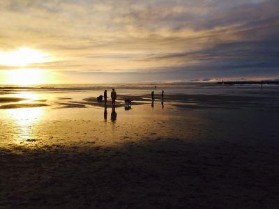 Dog Beach (Ocean Beach)
