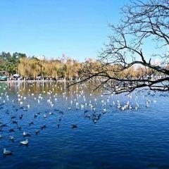 Green Lake Park User Photo