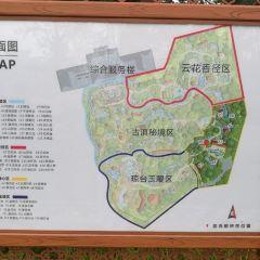 Qicai Yunnan Gudian Hot Spring Villa User Photo