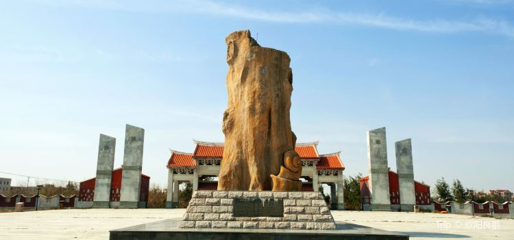 Shenhuwan Submarine Ancient Forest Relics Nature Reserve1