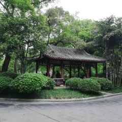 Park of Marquis Liu User Photo