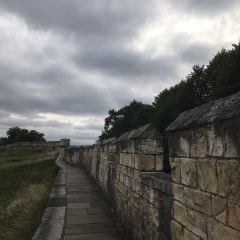 York City Walls User Photo