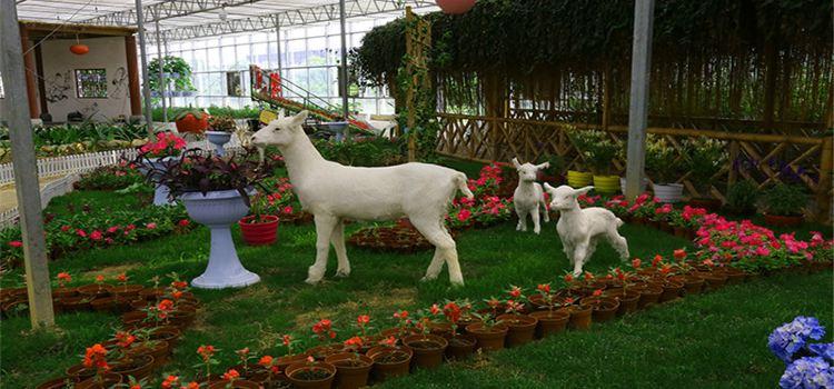 Dapu Rural World2