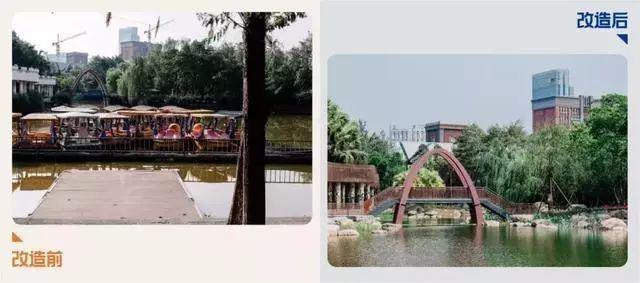 闊別6個月!新華公園華麗迴歸:植物更多!湖更大...