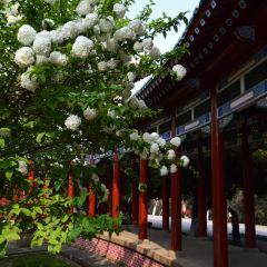 열사공원 여행 사진