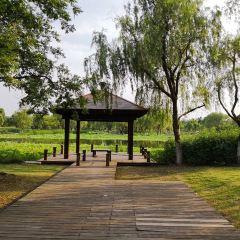 Lianchihu Park User Photo