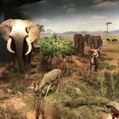 Zhejiang Natural History Museum User Photo