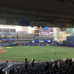 棒球場用戶圖片